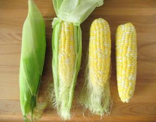 You Should L The Husk Off Corn Just Before Cook It To Do So Back Hold Led Ear Of In One Hand