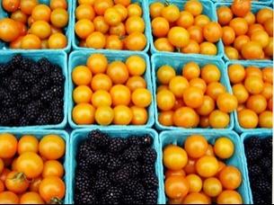 startcooking.orangetomatoesandblackberries_305